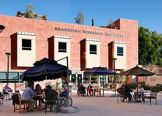 Brandman Research Institute Launched